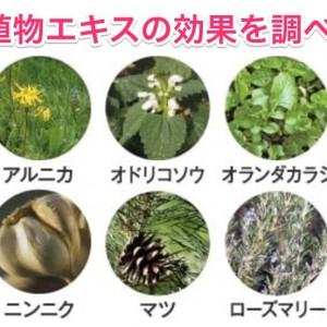10種の植物エキスは頭皮の潤いにどんな効果があるのか調べてみた!